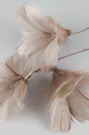 PÅSKFJÄDRAR- Mullvad | Vackra fjädrar i en fin beige nyans som förgyller hela påsken